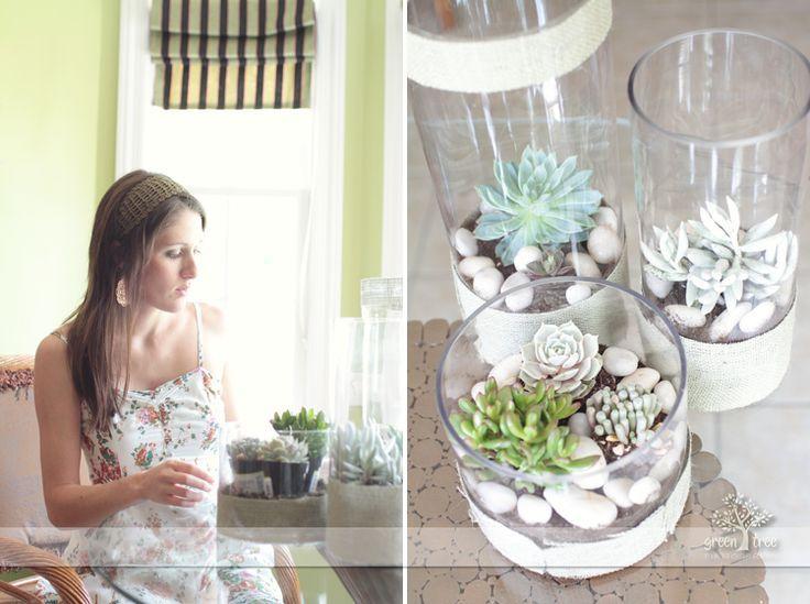 DIY Succulent Centerpieces For Client Meeting Room