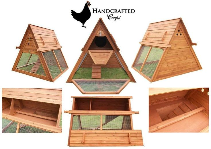Free printable chicken co op plans chicken coops for 6 for Chicken coop size for 6 chickens