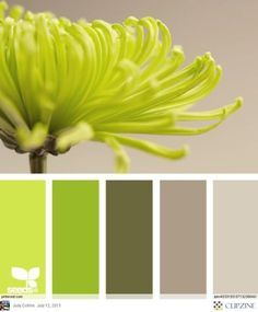 Color Palettes Swap Out The Lime Green For A Sage