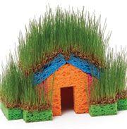 Little grass house- so cool