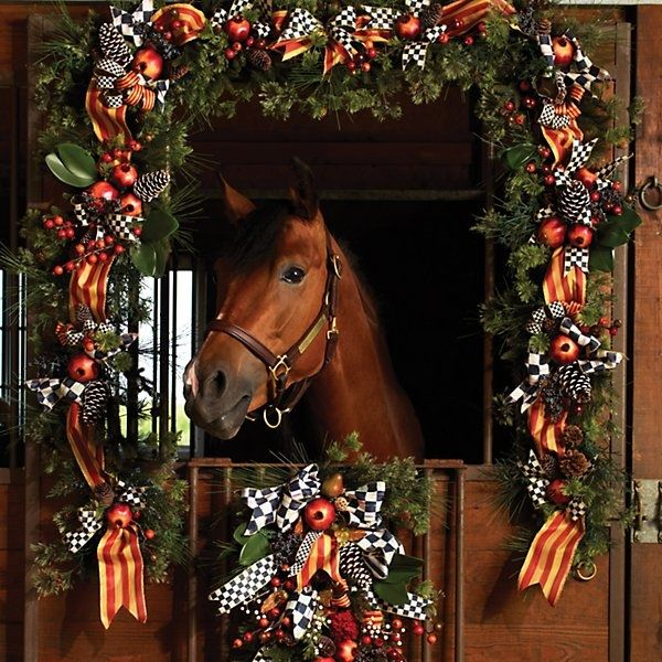 Christmas Decorations For Your Horse : Best stall decorating images on