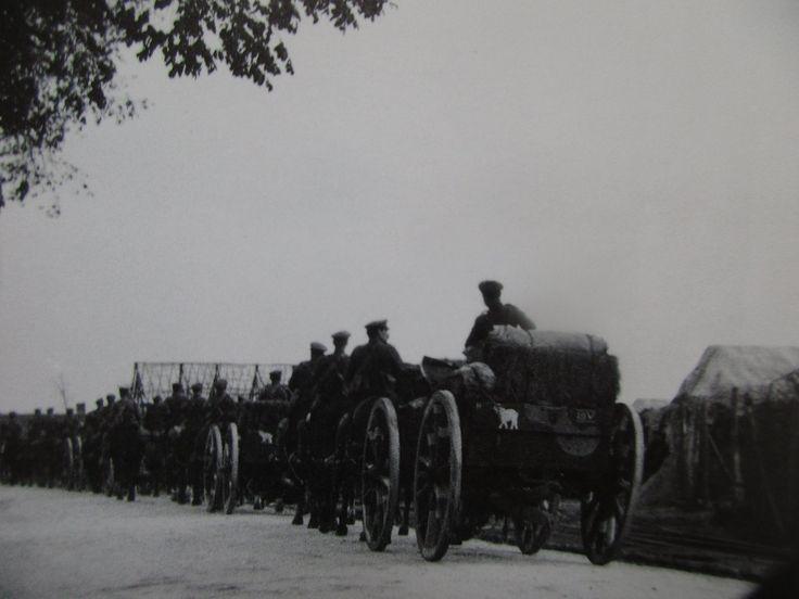 British artillery, 1914, Queen Elizabeth of Belgium