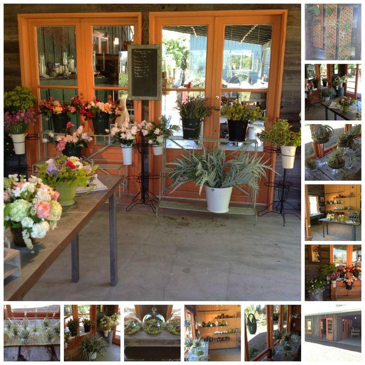 Floral shop business plan