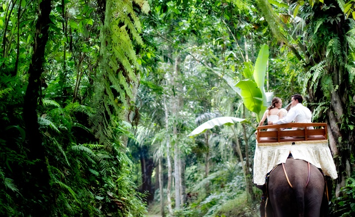 Travel Beyond Places with Burufly. The new way to discover Indonesia and its treasures