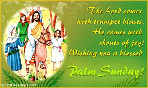 palm sunday | Happy Blessed Palm Sunday for all Christian people ...