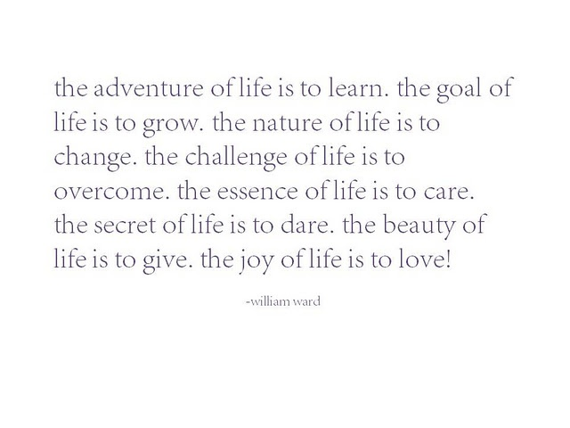 the adventure of life is...