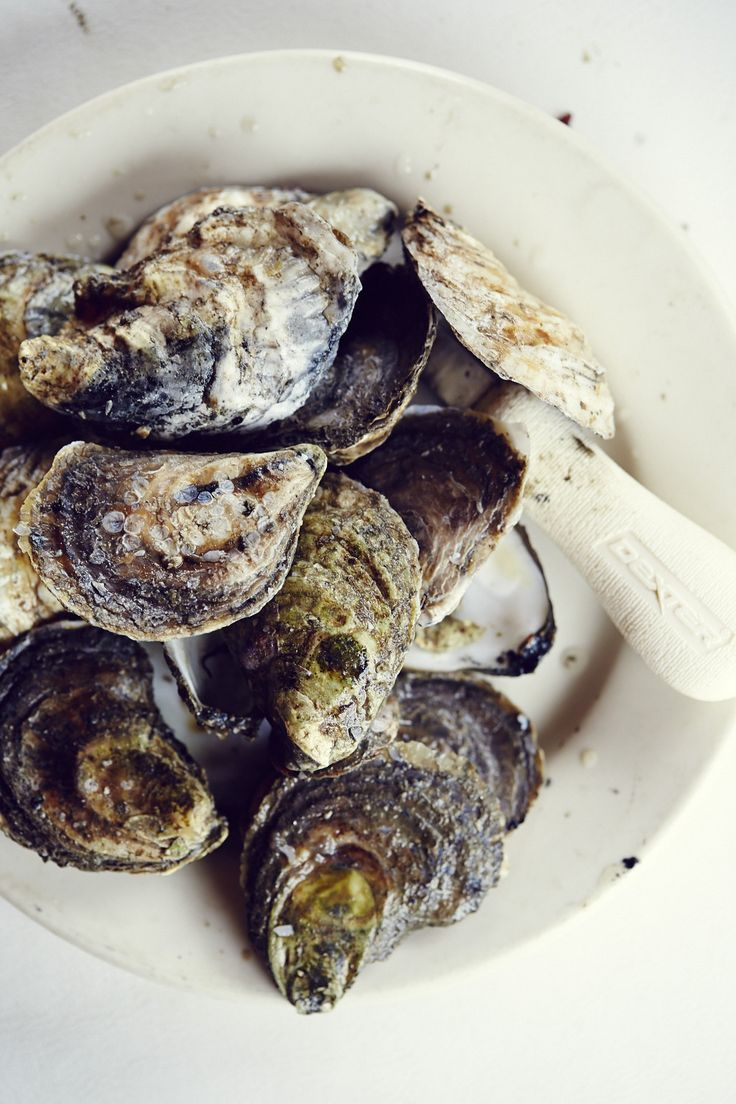 Cold northern waters are providing some of the best oysters we've tasted