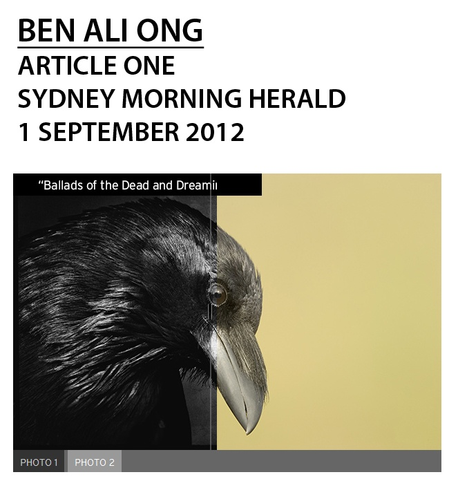 """The case of Ben Ali Ong; """"Art world in a flap as it takes stock of contentious images"""" Adam Fulton, Arts Writer, SMH; (click photo for direct link to article)"""