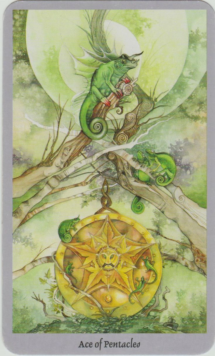 23 Best Images About 64. Ace Of Pentacles On Pinterest