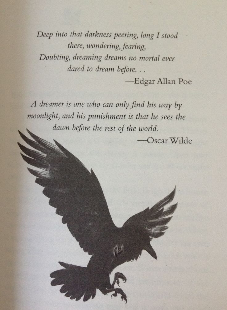 the raven by edgar a poe essay The raven: the raven, best-known poem by edgar allan poe lenore and nevermore poe's 1846 essay the philosophy of composition describes his careful crafting of the poem learn more in these related britannica articles: edgar allan poe: life.