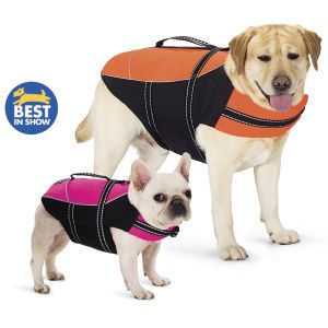 Life Jacket - Dog Beds, Dog Harnesses and Collars, Dog Clothes and Gifts for Dog Lovers | In The Company Of Dogs