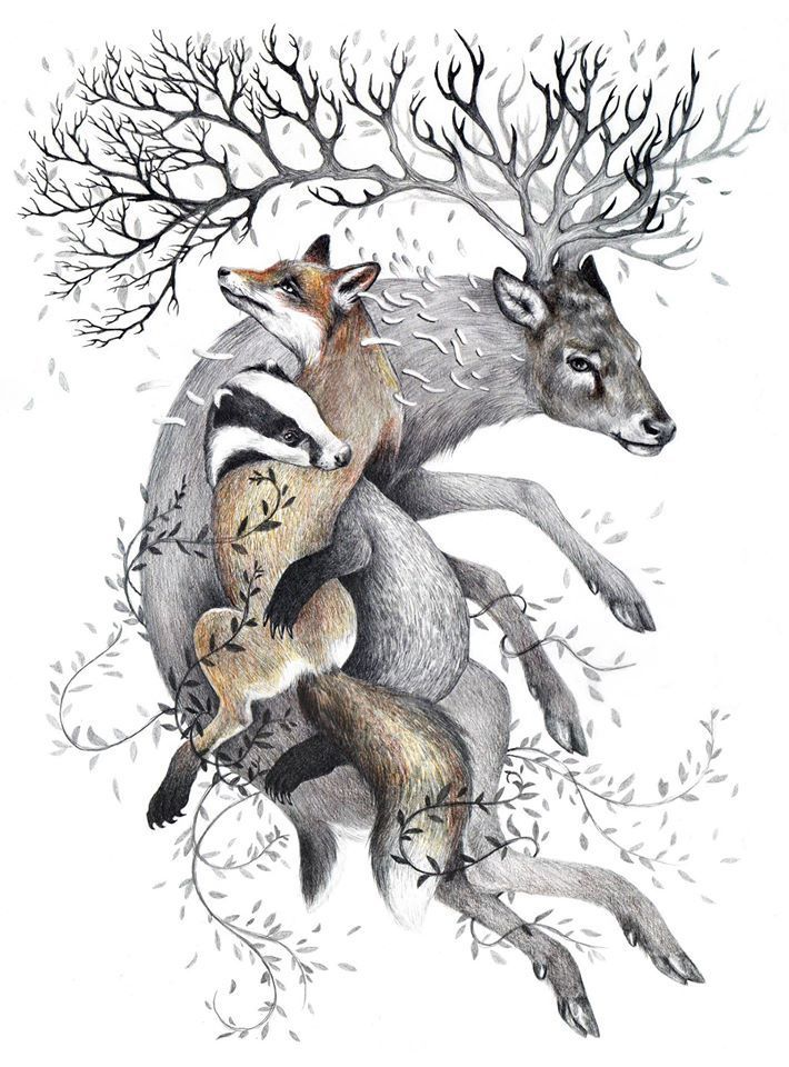 """Protect Wildlife"" -by Kate Louise Powell from the Sheppard Collection Of Vegan Art www.sheppardcollection.org.uk"