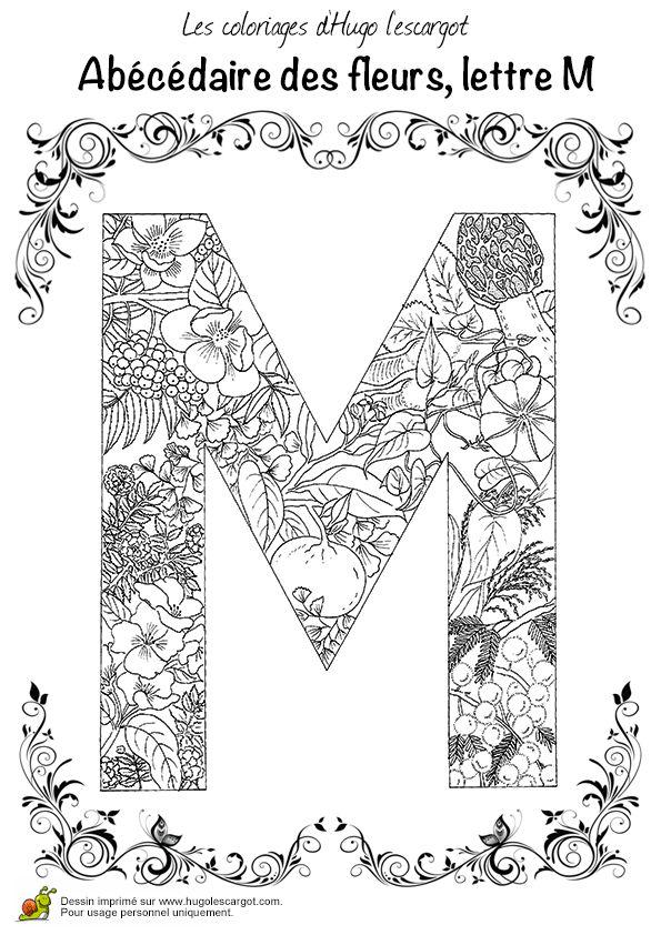 Abecedaire Belles Fleurs A Lettre M, page 13 sur 26 sur HugoLescargot.com