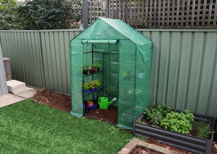 Walk in Greenhouse with shelves and Green PE cover