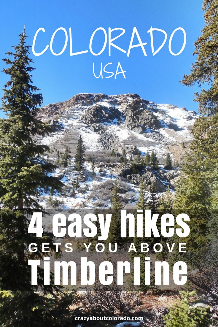 4 amazing easy hikes above timberline in the Colorado Mountains. Tundra, alpine lakes, marmots. Hike or snowshoe, on these family friendly trails.