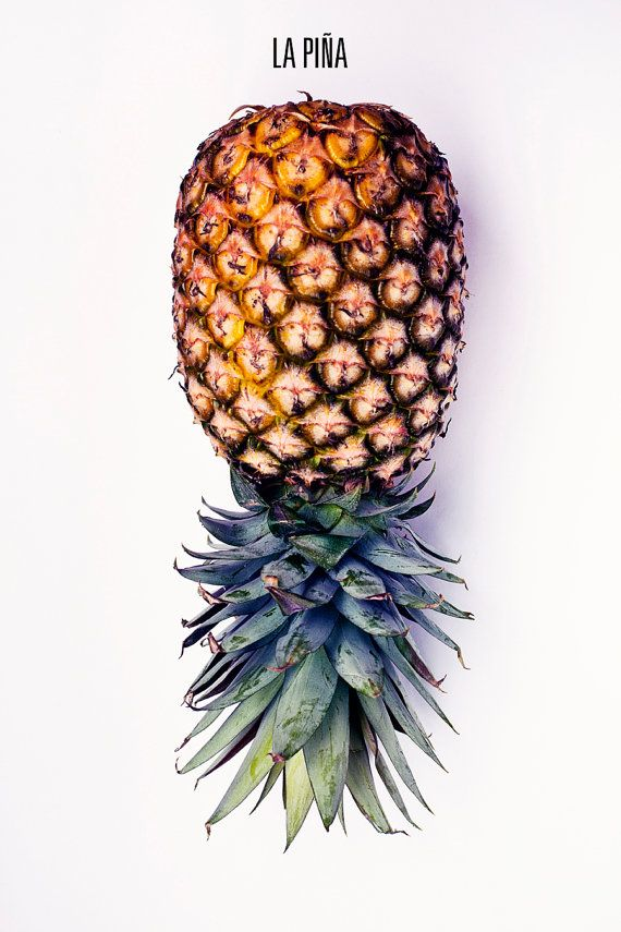 PINEAPPLE Still Life Photo 8 x 12 Food Photography, Pineapple, La Pina, Fruit…