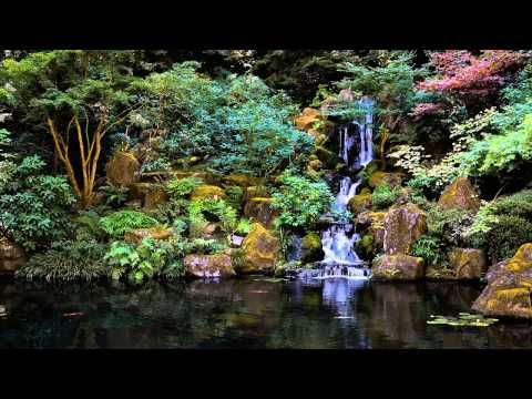 ▶ 3 HOURS of The Best Relaxing music | Bamboo Flute | - Meditation - Spa - Healing - Sleep - YouTube