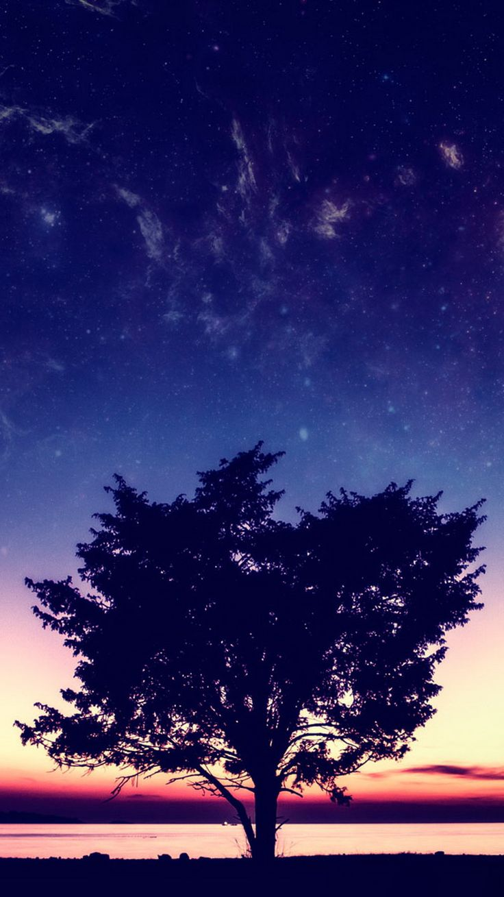 Night sky iphone wallpaper tumblr - Blue Sunset Sky Over Tree Iphone 6 Wallpaper Http Freebestpicture Com