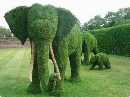 boxwood sculpture boxwood sculpture boxwood sculpture: Megalith Structure, Moss Art, Gardens Sculpture, Frontyard, Elephants Art, Front Yard, Rolls Tide, Gardens Art, Topiaries