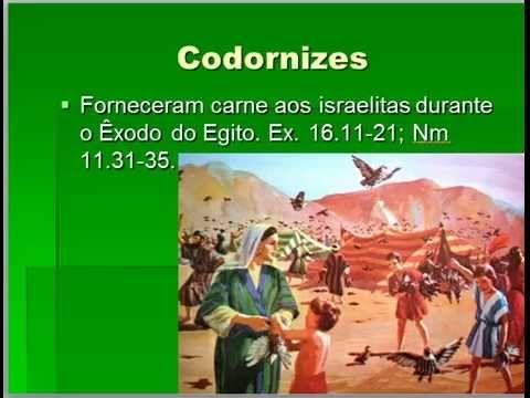 Ms de 25 ideas increbles sobre teologia biblica en pinterest geografia biblica aula 3b urtaz Gallery