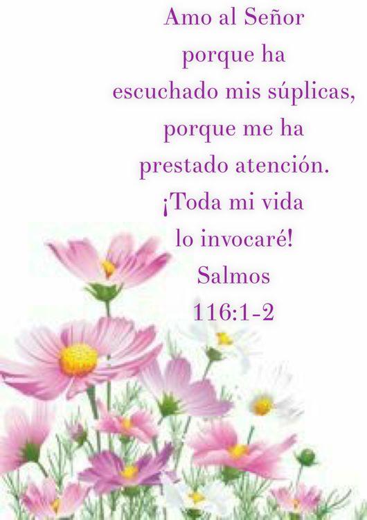Salmos 116:1-2
