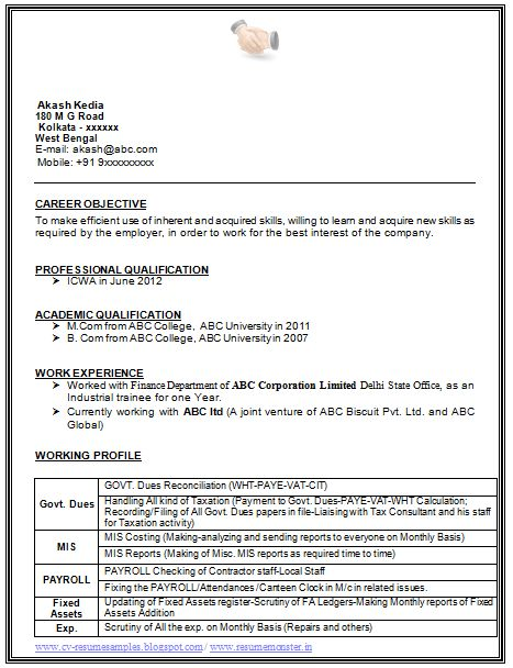 sample template example of beautiful excellent professional curriculum vitae resume cv format with career - Professional Objective For Resume