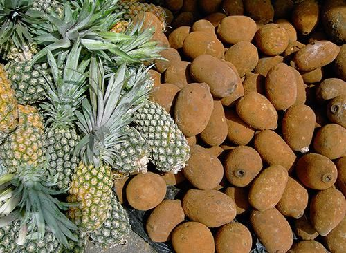 """Cupuaçu -   Pronounced """"koo-pwah-soo,"""" this has been called the """"next great superfruit,"""" a """"pharmacy in a fruit"""" and """"Brazil's new chocolate,"""" and the cupuaçu indeed shows promise as a weight-loss weapon. The fruit, which looks like a coconut and tastes like chocolate, pineapple and pear, is rich in vitamin C, B vitamins and amino acids."""