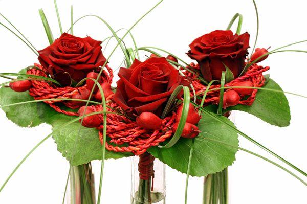 http://holmsundsblommor.blogspot.se/2010/02/alla-hjartans-dag.html Allahjärtansros med rep och blad