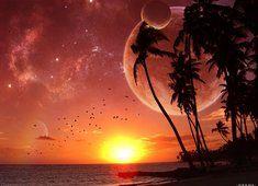 Tapeta Kosmiczne Zachody słońca Morze Ocean Planety Palmy