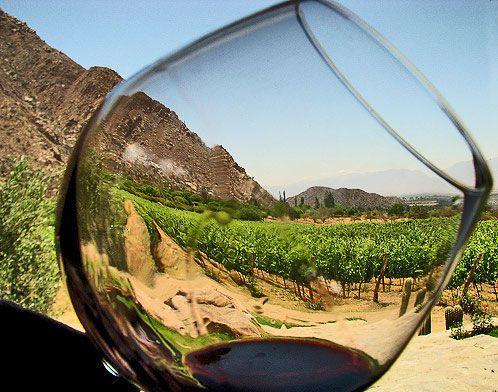Ruta del Vino, Ensenada