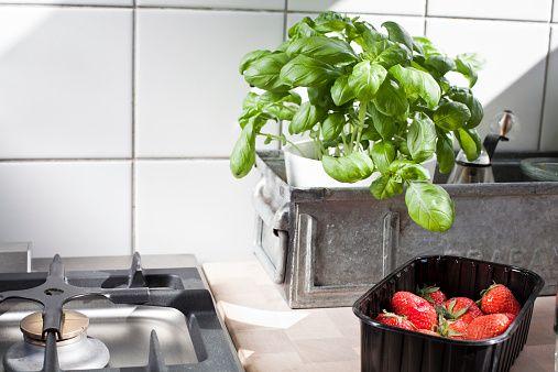 Stock Photo : Stillife in a kitchen