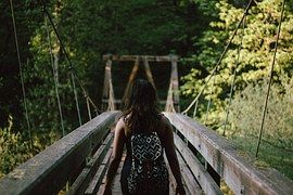 Wooden, Bridge, Nature, Wood, Landscape