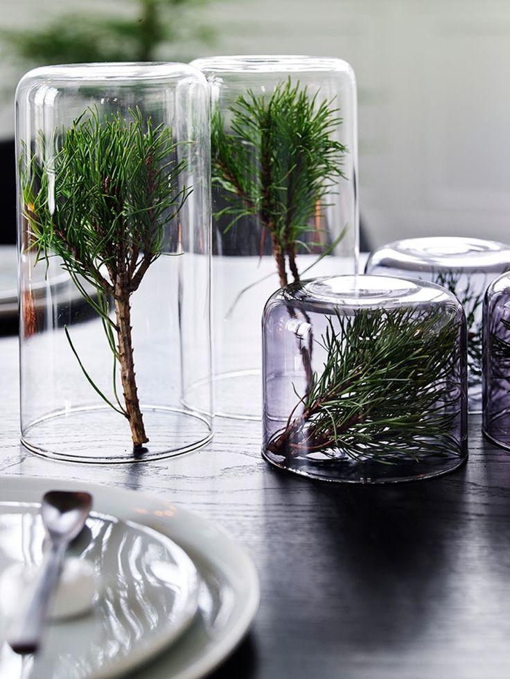 Une belle décoration de table simple, gratuite et nature : des branches de sapin sous cloche / bocal / verre... #decoration #noel #DIY