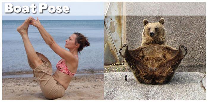 yoga-animals-wildammo-92