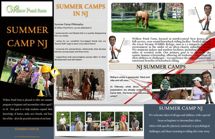 NJ Summer Camps activities are performed under the guidance of skilled instructors. Outdoor trips are conducted to explore nature. Check this link right here http://www.willowpondfarmnj.com/Camp-Registration.html for more information on NJ Summer Camps. Other outdoor adventures such as mountain hiking, low ropes and rock climbing challenge the endurance of campers. In horseback riding, campers get to select their horses.
