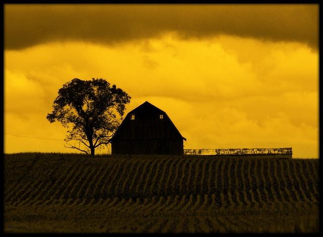 Illinois barn silhouette