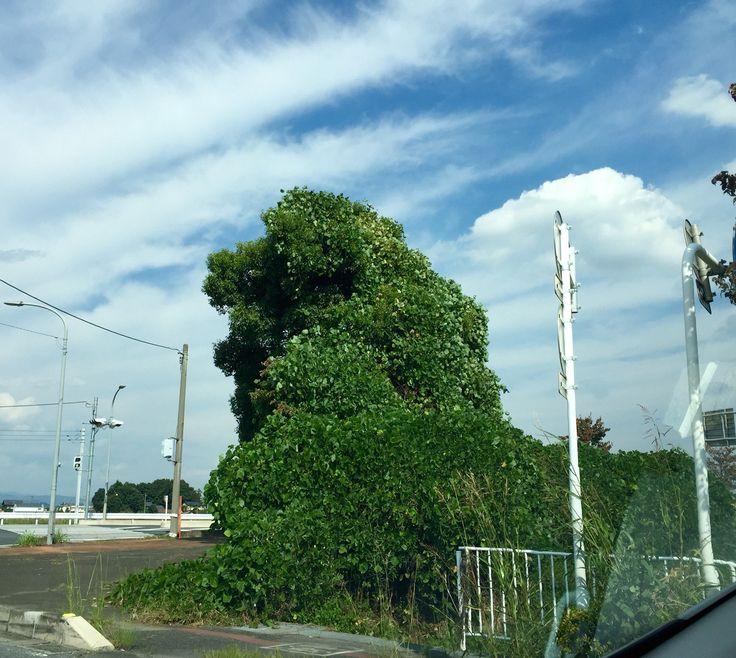 ライオン! 道端の樹木と草のアート!