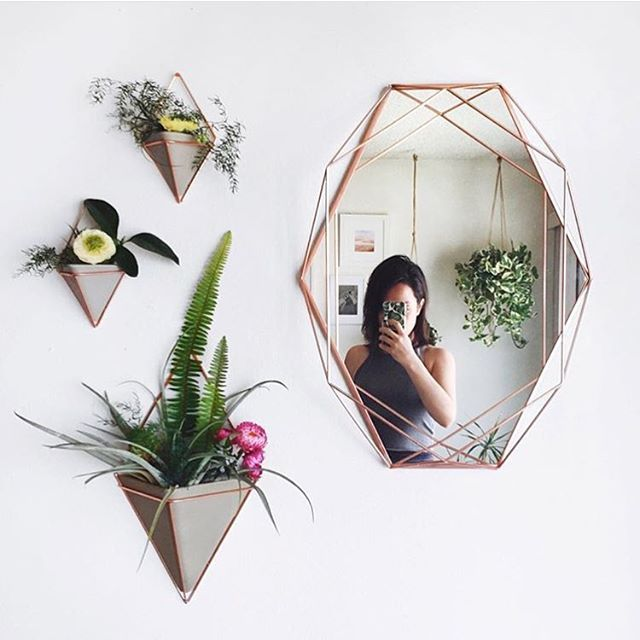 Umbra Frame Wall Decor : Best images about living with plants on