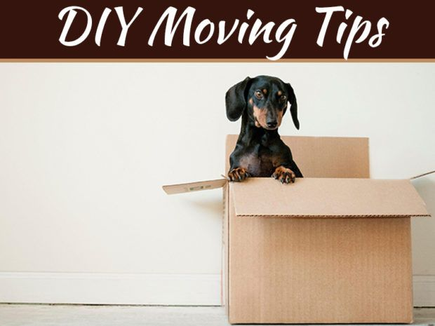 How To Do A Diy Move Without Breaking All Of Your Stuff Moving