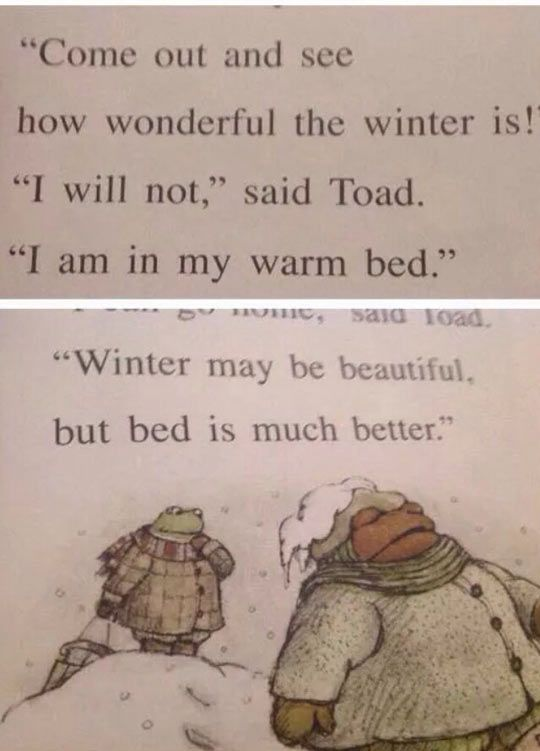 Toad Has A Very Good Point