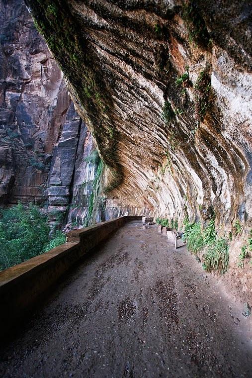 Zion National Park, Utah  Weeping Rock