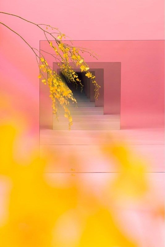 Pink and yellow make a dreamy colour collaboration and work together to create a bright and ultra-modern look.