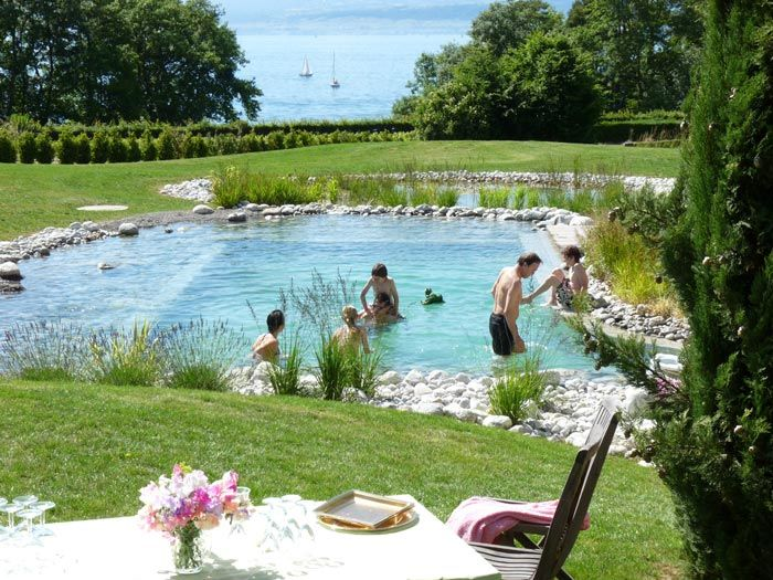 11 best Natural Pools images on Pinterest Natural swimming pools