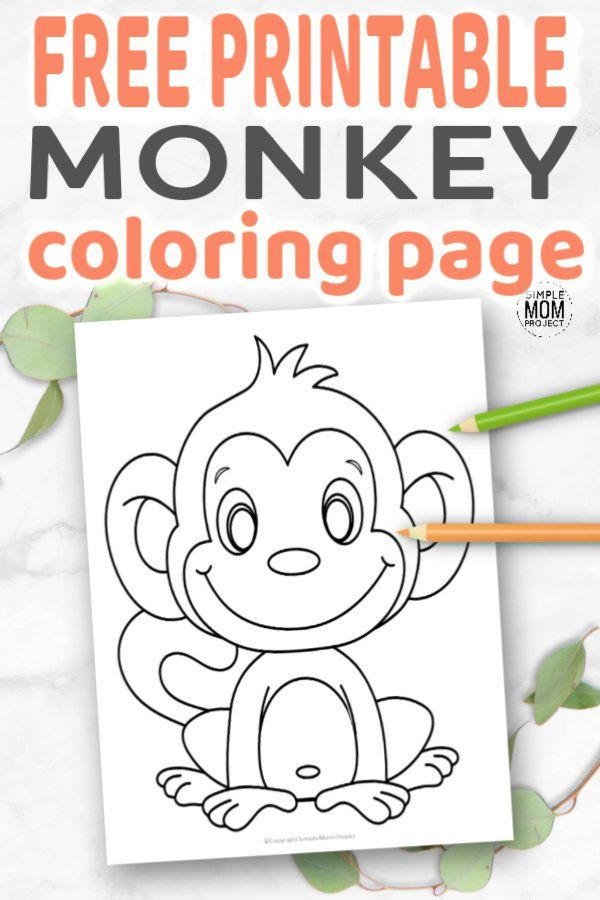 Cute Baby Monkey Coloring Page For Kids Monkey Coloring Pages