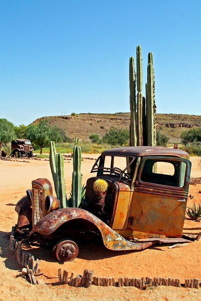Cactus garden old truck. Mother Natures Auto Collection reminds of of Baja California