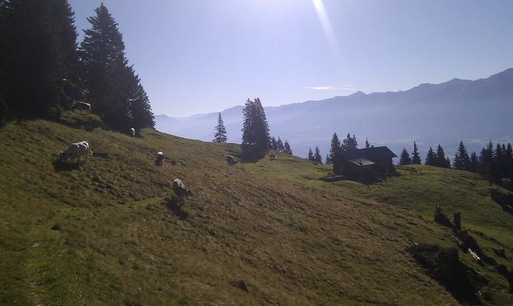 Der Sonne entgegen wandern - Die schönsten Almen in Tirol verzaubern jeden aktiven Alpen-Fan! Austria Taxi Tipotsch bringt alle die noch höher hinaus wollen, zu den optimalen Wander-Einstiegen im Ötztal und ganz Tirol. Als Taxi Ötztal Bahnhof können wir Sie direkt vom Zug abholen und stehen vor der Bahnhofs-Halle bereit.