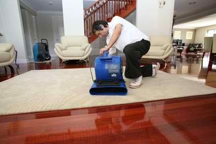 As a part of problem you could be looking for flooded carpet Melbourne since you want to get everything cleaned at your home.