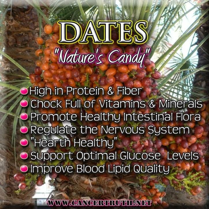 What Is The Nutritional Value Of Dates Livestrong Com | My Wallpaper