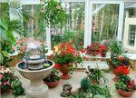 Идеи обустройства зимнего сада. Обсуждение на LiveInternet - Российский Сервис Онлайн-Дневников