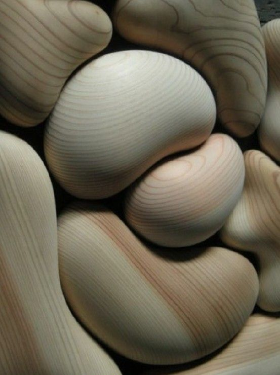 Shinpei Arima - Japanese Cedar forms